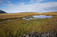 Küstenstreifen, Tümpel, Moore, Moorweiher am Skagafjörður, Skagafjördur, Fjord, Tundra, Reykir - Grettislaug, Nord Island, Skagafjörður fjord in northern Iceland