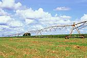 Rolandia, Parana State, Brazil. Field of cotton (Gossypium sp) with irrigation system.