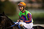 Robbie Albarado at the Cash Call Futurity on December 14, 2013 at Betfair Hollywood Park in Inglewood, California .(Alex Evers/ Eclipse Sportswire)