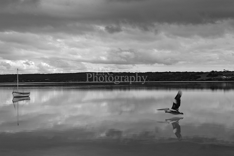 Pelican Lagoon American River Kangaroo Island One of Those Amazing Days Great Light For Photography