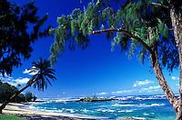Malaekahana Beach Park on the North shore of Oahu