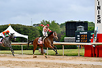 HOT SPRINGS, AR - APRIL 13:  Apple Blossom Handicap at Oaklawn Park on April 13, 2018 in Hot Springs,Arkansas.  #2 Unbridled Mo with jockey Ricardo Santana, Jr. (Photo by Ted McClenning/Eclipse Sportswire/Getty Images)