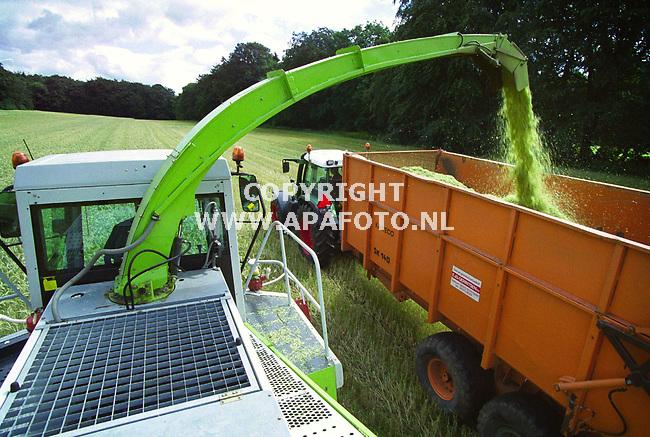 Wageningen , 260600  Foto : Koos Groenewold / APA<br /> Loonbedrijf Gerritsen is bezig met het oogsten van ` gps` . Er wordt krachtvoer voor vee van gemaakt.