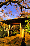 Japanese Pagoda, Rockefeller Estate, Pocantico Hills, New York.