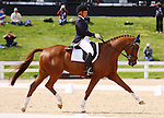 April 24, 2014: Consensus and Julie Norman compete in Dressage at the Rolex Three Day Event in Lexington, KY at the Kentucky Horse Park.  Candice Chavez/ESW/CSM