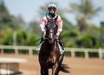 MAY 29, 2021: Bombard with Flavien Prat aboard, wins the Daytona Stakes at Santa Anita Park in Arcadia, California on May 29, 2021. EversEclipse Sportswire/CSM