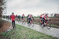Peloton with Tiesj Benoot (BEL/Lotto Soudal) up front riding the Haaghoek cobbles. <br /> <br /> 74th Omloop Het Nieuwsblad 2019 (BEL)<br /> Gent – Ninove: 200km<br /> ©kramon