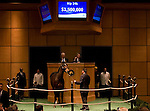 07 November 2010.  Hip #146 Serious Attitude sells for $1,500,000.  Consigned by Sweezey & Partners, purchased by Shadai Farm.