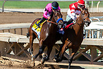 """ARCADIA, CA. SEPTEMEBER 29:  Going into the stretch #4 Game Winner, ridden by Joel Rosario, takes on #1 Rowayton, ridden by Florent Geroux, in the American Pharoah Stakes (Grade l) """"Win and You're In Breeders' Cup Juvenile Division"""" on September 29, 2018 at Santa Anita Park in Arcadia, CA.  (Photo by Casey Phillips/Eclipse Sportswire/CSM)"""