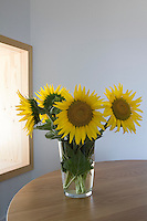 An arrangement of beautiful sunflowers in a glass vase on w wooden table
