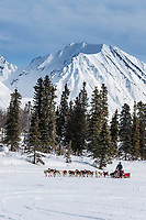 Mitch Seavey runs on the trail near the Rainy Pass checkpoint at Puntilla Lake in the Alaska Range during the 2019 Iditarod on Monday, March 4th 2019.<br /> <br /> Photo by Jeff Schultz/  (C) 2019  ALL RIGHTS RESERVED