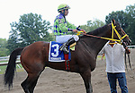 August 02 2015: Wildcat Red, ridden by Paco Lopez, wins the Teddy Drone Stakes on Haskell Day at Monmouth Park in Oceanport, NJ. Sophie Shore/ESW/CSM
