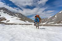 Hiking across remnant snow in the Arctic National Wildlife Refuge, Brooks Range, Arctic Alaska.