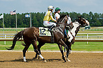 19 June 2010: Lady Rizzi and Alan Garcia go to the start of the Buckland Stakes race at Colonial Downs in New Kent, Va. Lady Rizzi is owned by Benchmark Racing Stable, trained by Linda Rice