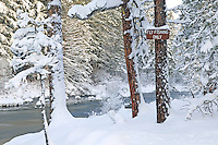 Fly Fishing Only sign on metolius River with snow. Oregon