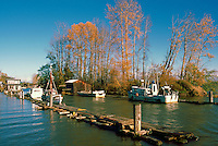 Commercial Fishing Boats docked at the Mouth of Finn Slough, along the Fraser River, Richmond, BC, British Columbia, Canada - in Autumn