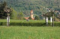 Casa ritiri spirituali  Eremo di Eupilio-Como<br /> La collina dello Spirito:lettura spirituale e silenzio