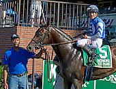 Junior Alvarado