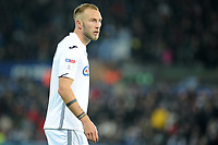Mike van der Hoorn of Swansea City during the Sky Bet Championship match between Swansea City and Norwich City at the Liberty Stadium, Swansea, Wales, UK. Saturday 24 November 2018
