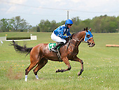 Sermon of Love leaps to the lead in the Gwathmey.