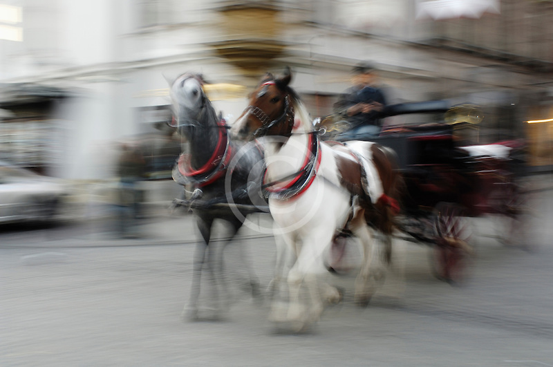 Poland, Krakow, Horse-drawn carriage, motion blur