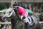 Poker Player and Channing Hill win the 23rd running of The Bourbon Grade 3 $150,000 at Keeneland Race Course for owner James Covello, Millennium Farms and West Point Thoroughbreds.  October 06, 2013.