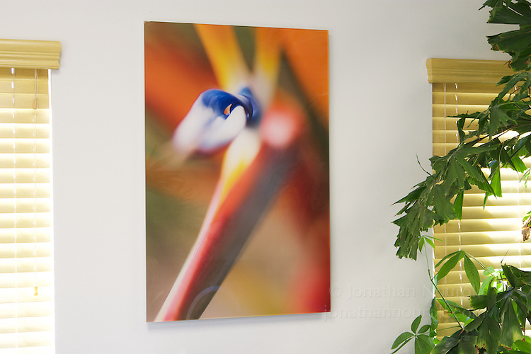 Commissioned photograph for an attorney's office in Riverside, California. Prints face-mounted onto acrylic.