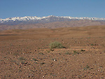 View to the North and the  High Atlas Mountains from the Dades Valley near El Kelaa M Gouna in Morocco.