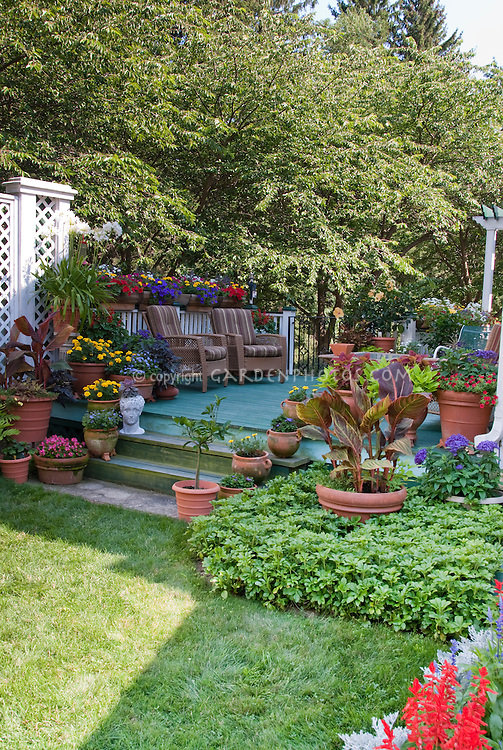 Backyard deck landscaping with container garden plants such as marigolds, canna, petunias, sweet potato vines, with patio furniture for outdoor living, fence, steps, variety of pots
