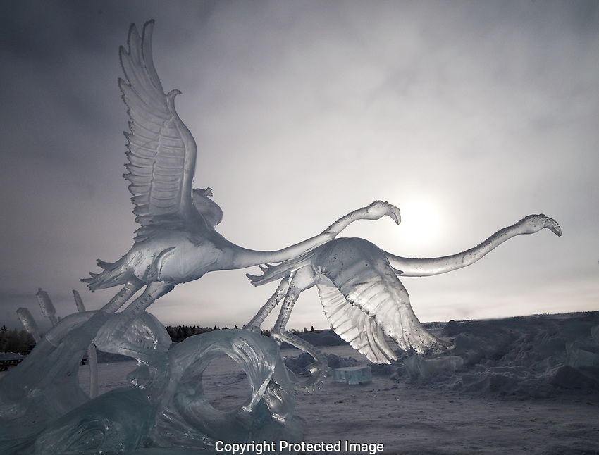 Ice carving of flamingos taking off, at Long Johm Jamboree in Yellowknife.