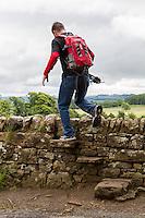 Northumberland, England, UK.  Hiker Climbing over a Step Stile, Hadrian's Wall Footpath, near Walwick. Model released.