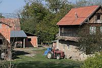 CROATIA, Slavonia, typical subsistence farm / KROATIEN, Slawonien, typische Subsistenzlandwirtschaft auf Parzelle hinter dem Haus im Dorf