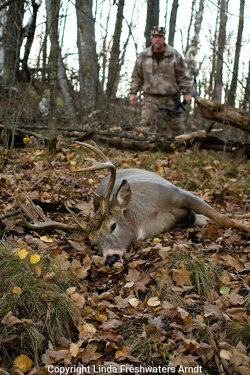 A well-placed arrow leads to a quick recovery of this bowhunter's 10-point white-tailed deer