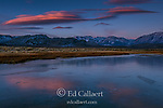 Dawn, Frozen Wetlands, Mono Basin National Forest Scenic Area, Inyo National Forest, Eastern Sierra, California