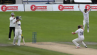 Sussex bowler, Stiaan Van Zyl successfully appeals for an lbw and Glamorgan batsman, Billy Root is out during Sussex CCC vs Glamorgan CCC, LV Insurance County Championship Group 3 Cricket at The 1st Central County Ground on 5th July 2021