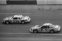 HAMPTON, GA - NOV 3:  Cale Yarborough, #28 Ford and Bill Elliott, #9 Ford, race through a turn during the Atlanta Journal 500 NASCAR Winston Cup race at Atlanta Motor Speedway, November 3, 1985. (Photo by Brian Cleary/www.bcpix.com)