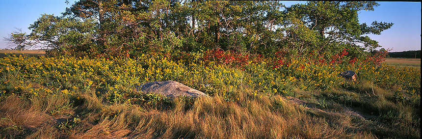 Autumn day at Chase's Island on the Seabrook, New Hampshire, salt marsh.  Photograph by Peter E, Randall