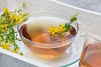 Johanniskraut-Tee, Johanniskrauttee, Tee, Kräutertee, Heiltee aus Johanniskraut, Blütentee. Tüpfel-Johanniskraut, Echtes Johanniskraut, Durchlöchertes Johanniskraut, Tüpfeljohanniskraut, Tüpfel-Hartheu, Hartheu, Hypericum perforatum, St. John´s Wort, Tipton's weed, rosin rose, goatweed, chase-devil, Klamath weed, tea, herbal tea, herb tea, Le millepertuis perforé, millepertuis commun, millepertuis officinal