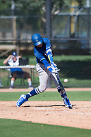 Los Angeles Dodgers catcher Diego Cartaya (91), the top prospect from the 2018 international signing period, at bat during an Instructional League game against the San Diego Padres at Camelback Ranch on September 25, 2018 in Glendale, Arizona. (Zachary Lucy/Four Seam Images)