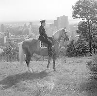 Policier ˆ cheval sur le mont Royal, 1967<br /> <br /> Photographie par RhŽal Benny