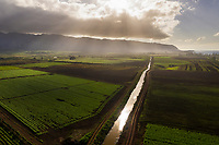 Aerial view of Waialua agricultural fields, North Shore of O'ahu.