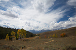 Idaho, South Central, Stanley. Autumn color in the Whitecloud Mountains with the Sawtooth Range distant.