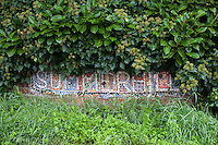 The painted Summerhill sign at the main entrance, Summerhill School, Leiston, Suffolk. The school was founded by A.S.Neill in 1921 and is run on democratic lines with each person, adult or child, having an equal say.  You don't have to go to lessons if you don't want to but could play all day.  It gets above average GCSE exam results.