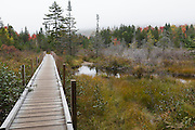 Bridge along the Zealand Trail in Bethlehem, New Hampshire on a foggy autumn day.