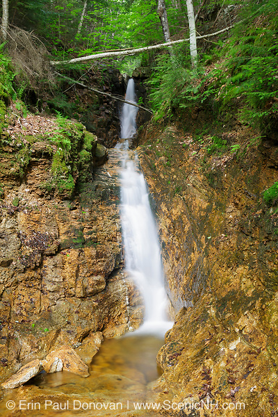 Small waterfall on Kedron Brook in Hart's Location, New Hampshire during the spring months. This scenic waterfall is within Crawford Notch State Park.