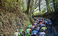 peloton up the 'Hagaard'<br /> <br /> 57th Brabantse Pijl - La Flèche Brabançonne (1.HC)<br /> 1 Day Race: Leuven › Overijse (197km)