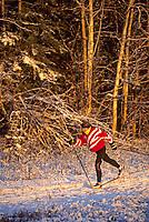 Cross country skiing, Fairbanks, Alaska