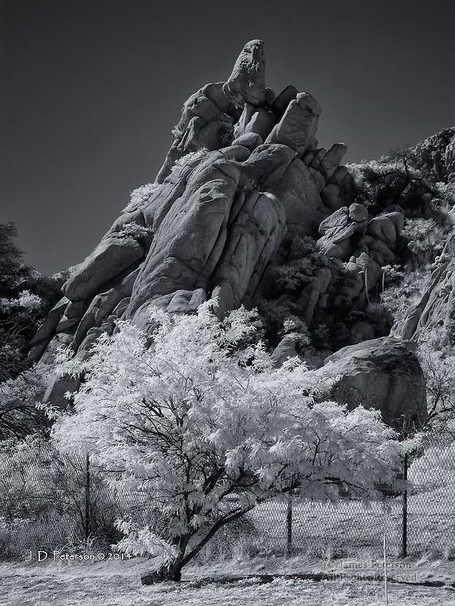 Granite and Mesquite, Texas Canyon, Arizona (Infrared)