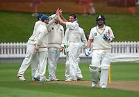 151217 Plunket Shield Cricket - Wellington Firebirds v Otago Volts