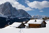 Europe/Italie/Trentin Haut-Adige/Dolomites/Val-Gardena/Selva Gardena :Lors d'une randonnée en raquettes  avec Reinhardt Senoner,guide.Le Massif des Dolomites et les chalets d'altitude